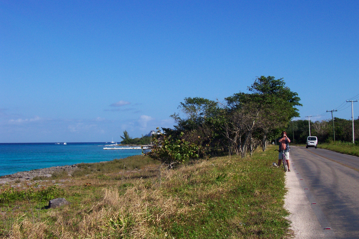 Beachside road