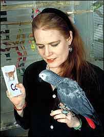 Parrot N'Kisi