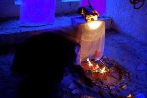 Nevruz Burning